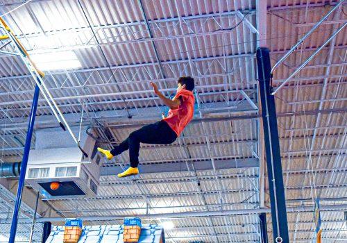 trapeze-monkey-ringsv1